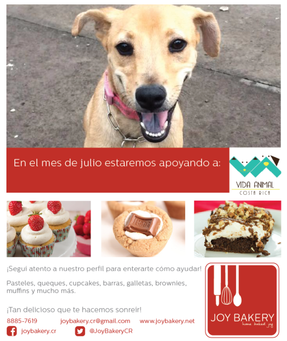 Regala Sonrisas - Joy Bakery - Vida Animal